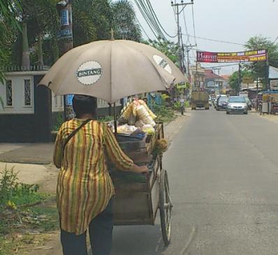 veggie seller in Jakarta, veggetable man
