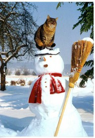 snowman with a cat hat, cat hat, best hat, top most popular cat, top most popular hat, best top cat, best top hat